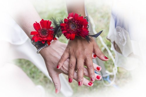 Photographe mariage - Alain SPIES  - photo 19
