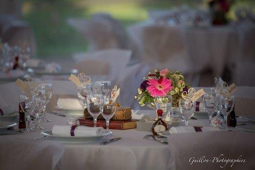 Photographe mariage - Nathalie et J-François GUILLON - photo 10