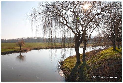 Photographe - Didier SIMON   Photographe - photo 35