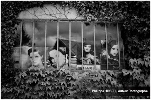Photographe mariage - Philippe HIRSCH ⎢ Photographe - photo 27