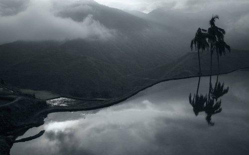 Photographe - Arnaud Carette - Photographe - photo 8