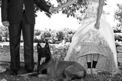 Photographe mariage - photographe - Jérôme Rozières - photo 1