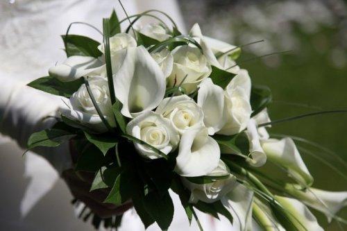 Photographe mariage - Form'AVI  - Photographie - photo 1
