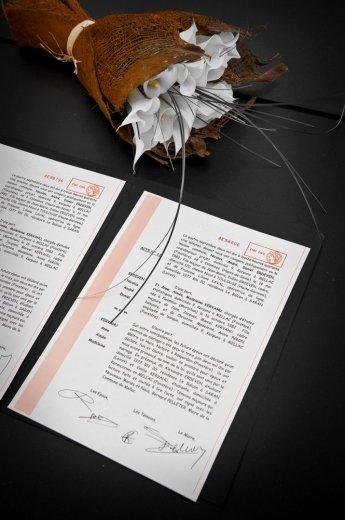 Photographe mariage - STEVE ROUX Photographe - photo 59