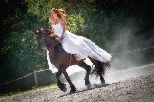 Photographe mariage - STEVE ROUX Photographe - photo 6