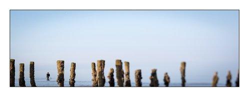 Photographe - Stephane Laure Photographe - photo 4