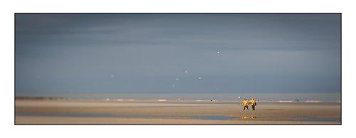 Photographe - Stephane Laure Photographe - photo 6