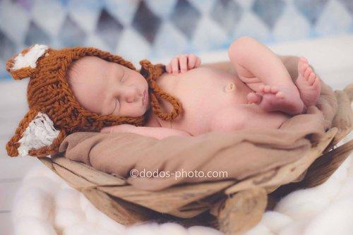Photographe - Dodo's Photo Photography - photo 15