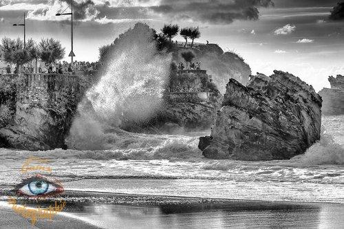 Photographe - Lionel Gams Photographie - photo 12