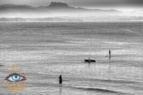 Photographe - Lionel Gams Photographie - photo 20