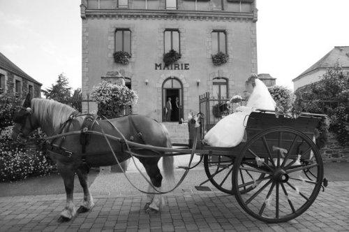 Photographe mariage - Les Photographes du Golfe - photo 92