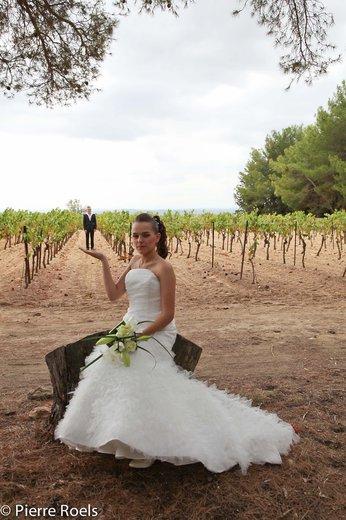 Photographe mariage - LES PHOTOS DE L'AMI PIERROT - photo 174