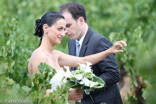 Photographe mariage - LES PHOTOS DE L'AMI PIERROT - photo 179
