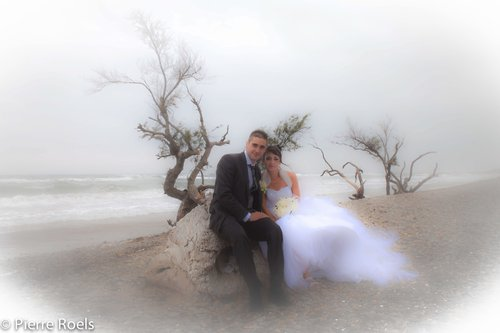 Photographe mariage - LES PHOTOS DE L'AMI PIERROT - photo 81