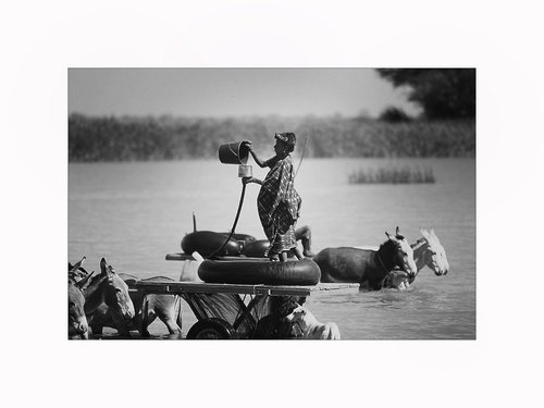 Photographe - JEROME ABOU REPORTER PHOTOGRAPHE - photo 28