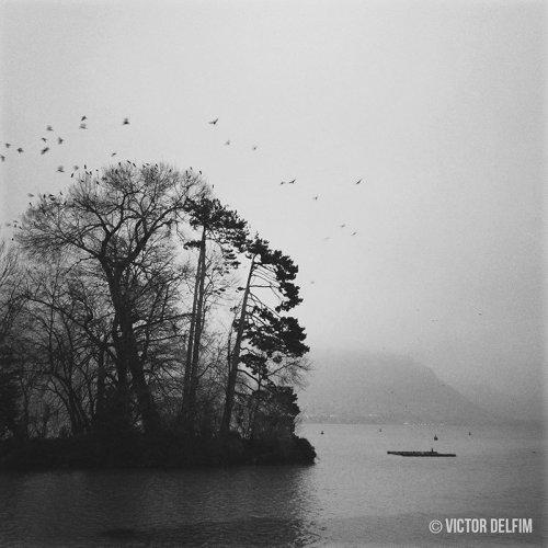 Photographe - VICTOR DELFIM - photo 4