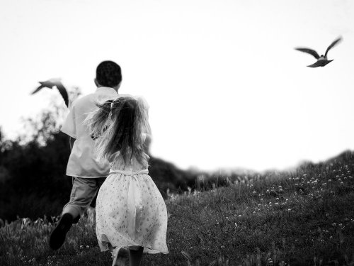 Photographe mariage - Damien Dupuy Photographe - photo 2
