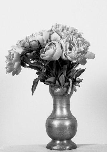 Photographe mariage - L'Atelier d'Images - photo 27