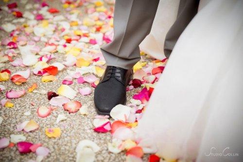 Photographe mariage - Studio Collin Photographie - photo 7