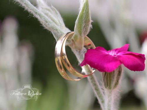 Photographe mariage - fallown robin - photo 23