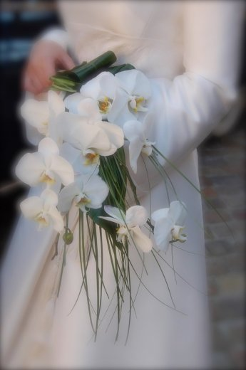Photographe mariage - STUDIO AZ - photo 22