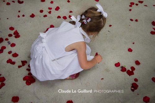 Photographe mariage - Le Guillard Claude - photo 22