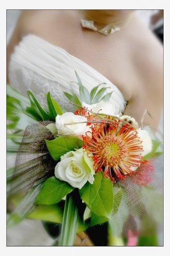 Photographe mariage - Free-Dom Studio - photo 13