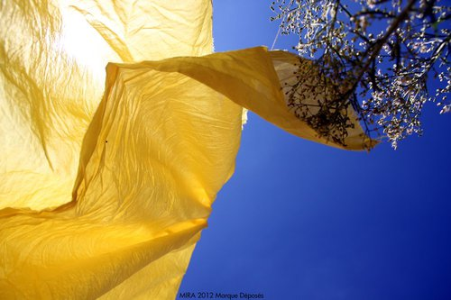 Photographe - Samera tamjounti - photo 67