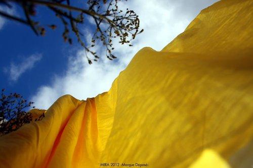 Photographe - Samera tamjounti - photo 73
