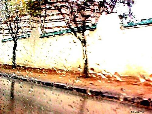 Photographe - Samera tamjounti - photo 36