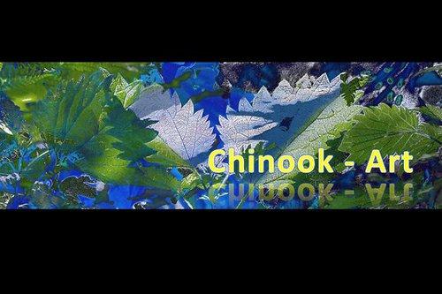 Photographe - Chinook-Art - photo 9