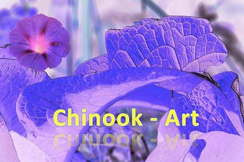 Photographe - Chinook-Art - photo 2