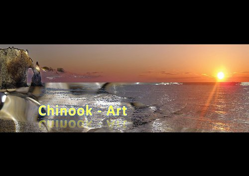 Photographe - Chinook-Art - photo 40