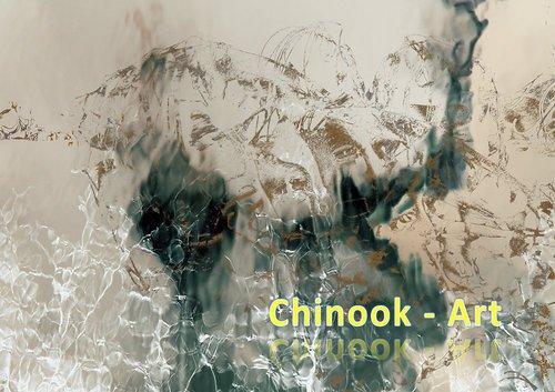 Photographe - Chinook-Art - photo 32
