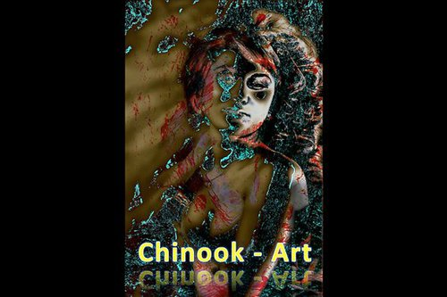 Photographe - Chinook-Art - photo 8