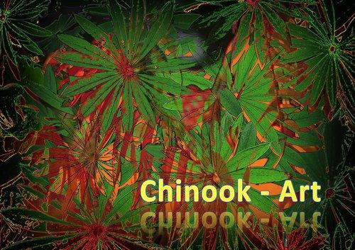 Photographe - Chinook-Art - photo 35