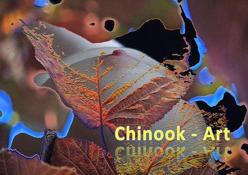 Photographe - Chinook-Art - photo 27