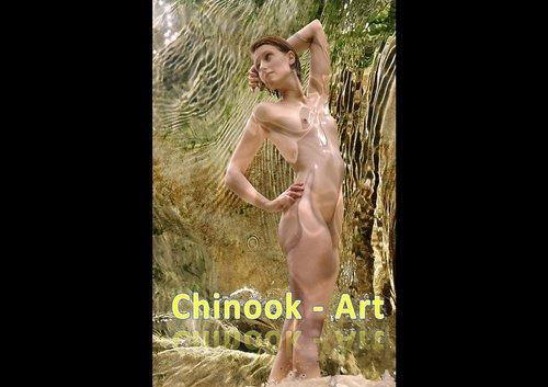 Photographe - Chinook-Art - photo 23