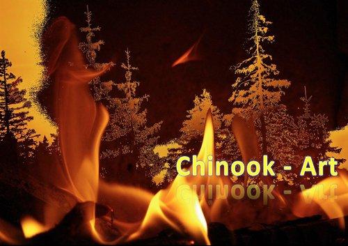 Photographe - Chinook-Art - photo 24