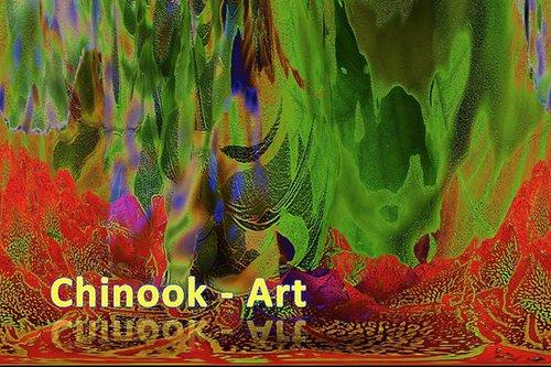 Photographe - Chinook-Art - photo 51