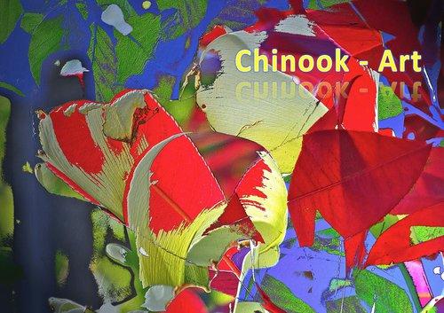 Photographe - Chinook-Art - photo 26