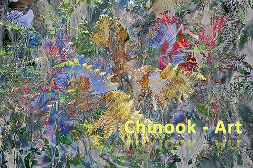 Photographe - Chinook-Art - photo 70