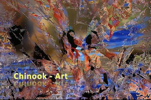 Photographe - Chinook-Art - photo 12