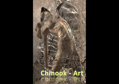 Photographe - Chinook-Art - photo 45