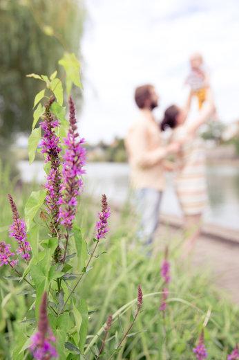 Photographe mariage - Nature Films - photo 113