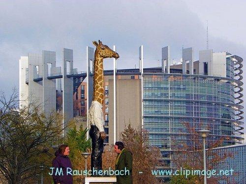 Photographe - JM Rauschenbach - photo 8