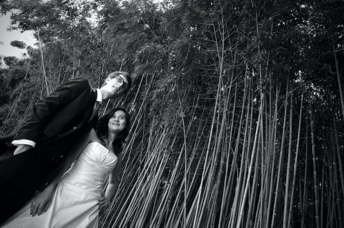 Photographe mariage - Christian Vicens Photographe - photo 32