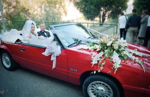 Photographe mariage - Cucchi Eric - photo 2