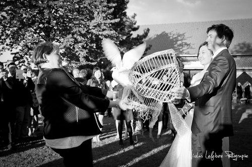 Photographe mariage - Sensoriel-Film - photo 9