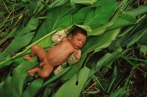 Photographe - patrickaventurier.com - photo 37